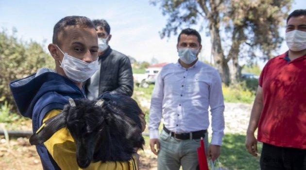ÂDEM'E 23 NİSAN MÜJDESİ '' SEÇER KEÇİ VE OĞLAK HEDİYE ETTİ''