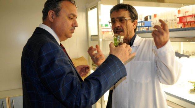 Mersin Valisi Ali İhsan Su Erdemli'de İncelemelerde Bulundu